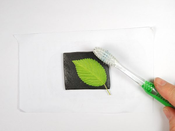 Use a toothbrush to texture the area around the leaf.
