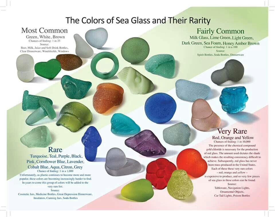what is sea glass the blue bottle tree