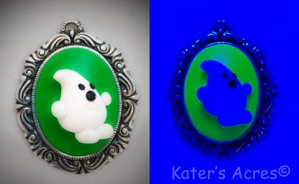 See how Parker from Kater's Acres glows under black light.