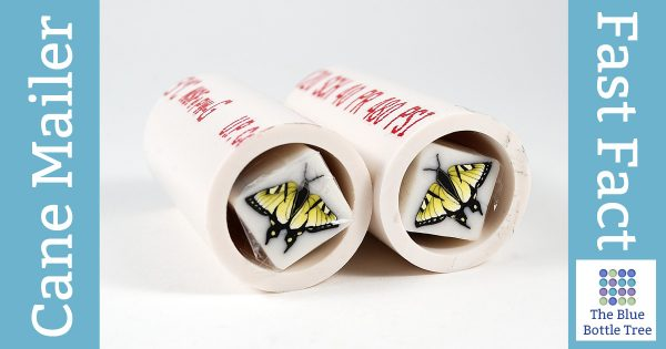 Use pieces of PVC pipe to make simple, an inexpensive polymer clay cane mailer.