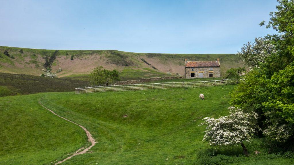 Levisham Moor and the Hole of Horcum